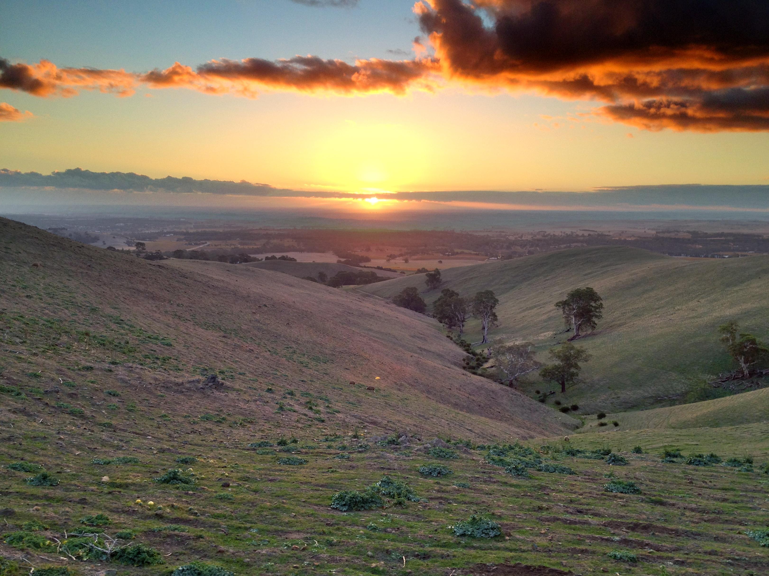 Barossa Valley - Sunset