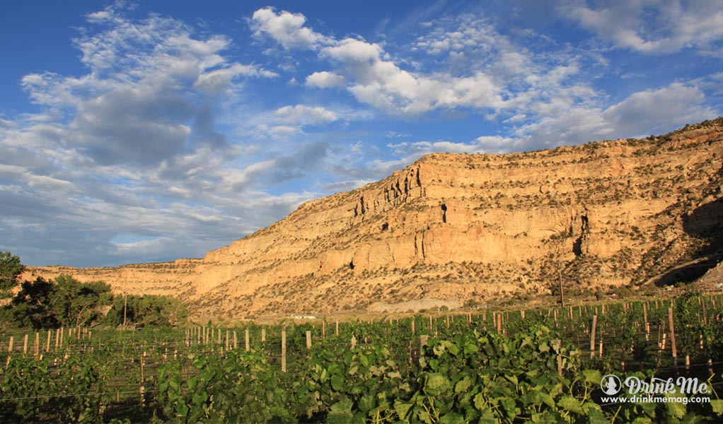 New Mexico Wines History Drink Me